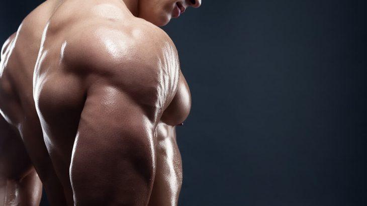 steroidi-naturali-quali-sono